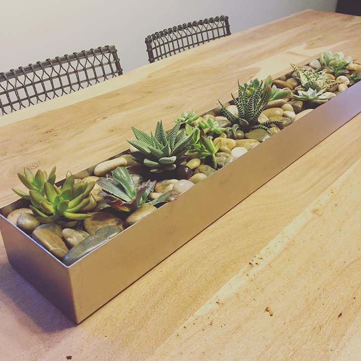 Succulents in Terrace centerpiece planter