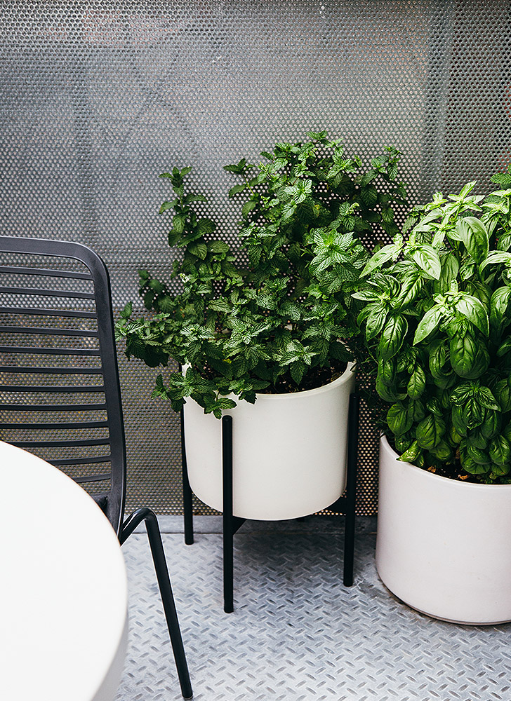 Case study planter and Shore planter on balcony